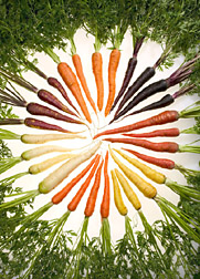 carrots and vegetables